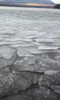 110116_氷
