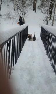 110212_雪あそび