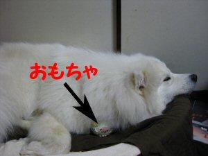 blog0671.jpg
