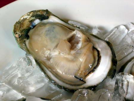 生牡蠣アップ
