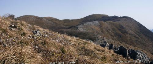 05 福寿草咲く尾根の先に霊仙山