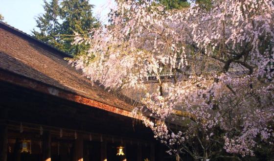 07 水分神社