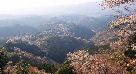 08 金峯山寺への道