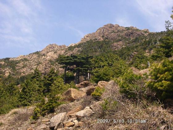 07 八巻山を見上げて