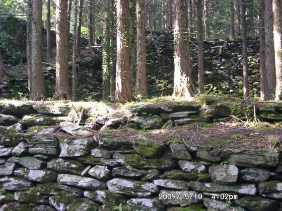 20 山城跡のような石垣