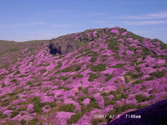 07-4 高岳東峰の斜面