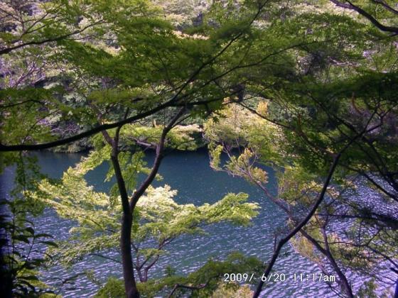 09 楓と湖水