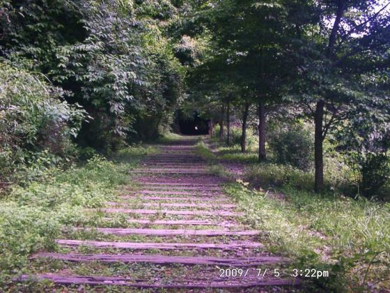 20 廃線跡の道