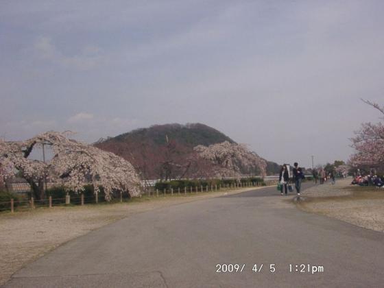 09 甲山