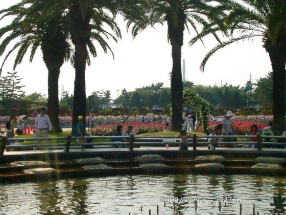 01浜寺公園噴水池