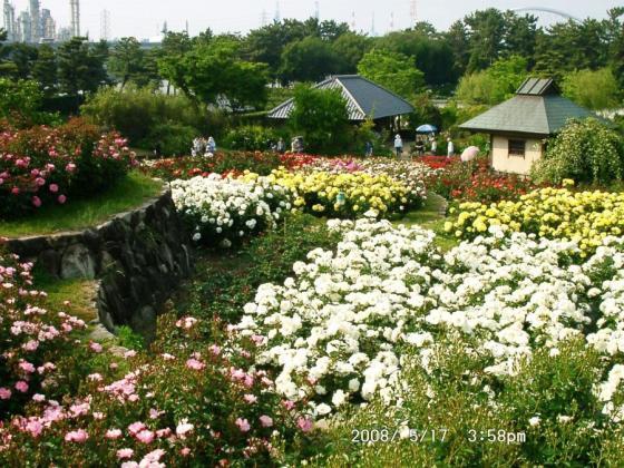 04 浜寺公園庭園3