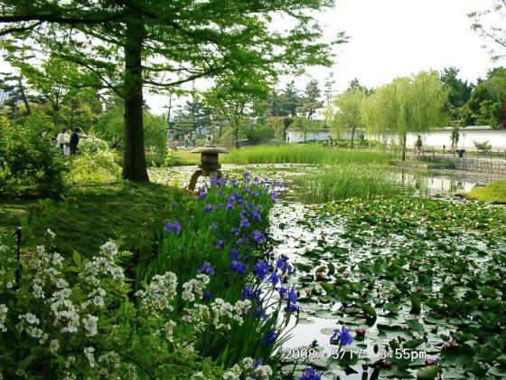 03浜寺公園庭園2
