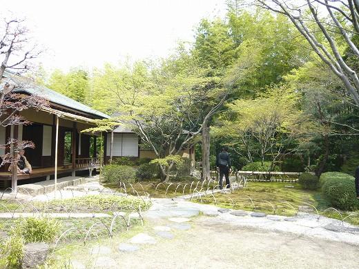 正伝院の庭