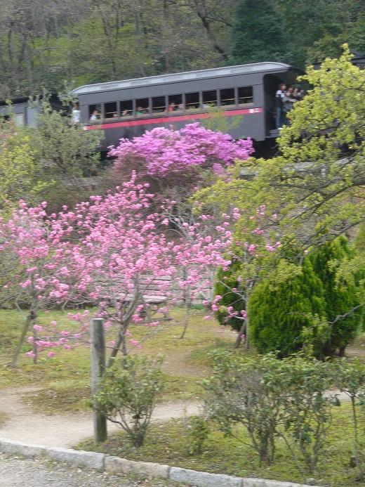 明治村の京都市電