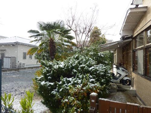 少し雪が降った朝