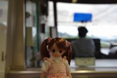 西日本151