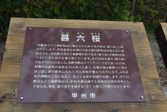 ぼんちツアー10