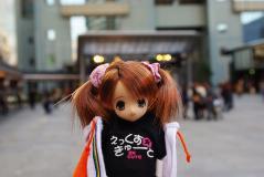 赤坂ヤマト02