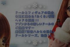 アゾンDM2011 1月21