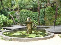 ペットと泊まれるホテル「四季の蔵」庭園