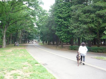 代々木公園#1