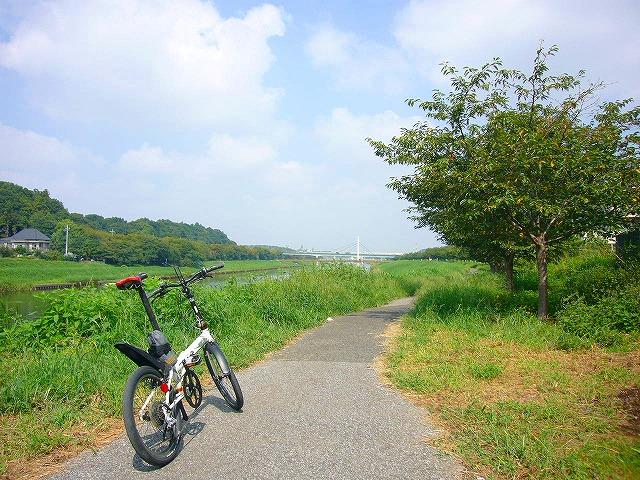 0809  印旛沼ポタ 005