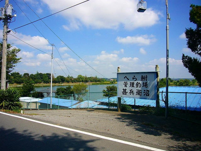 0809  印旛沼ポタ 038