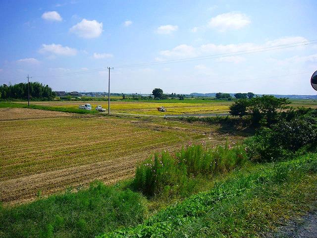0809  印旛沼ポタ 041
