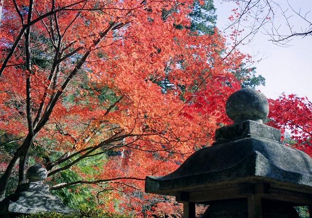 無題-スキャンされた画像-京都西山06