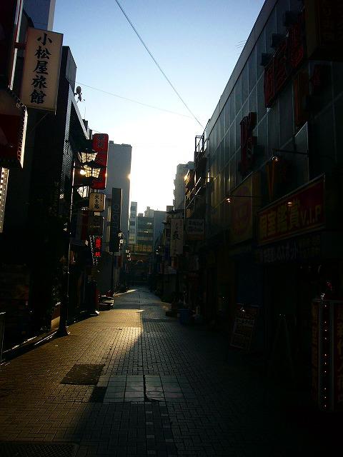 0810  上野文京区朝ポタ 019