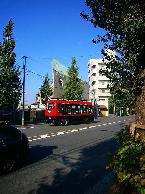 0810  上野文京区朝ポタ 036