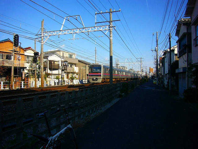 P1170647.jpg