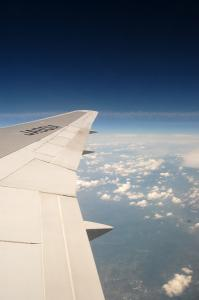 wing05.jpg