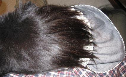 200812_0290-1.jpg