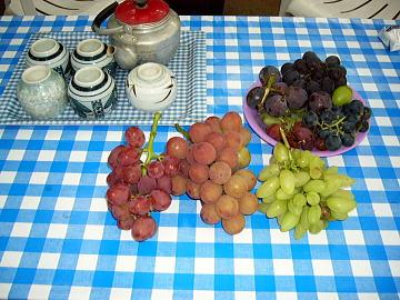 2-grape-002.jpg