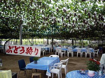 2-grape-003.jpg
