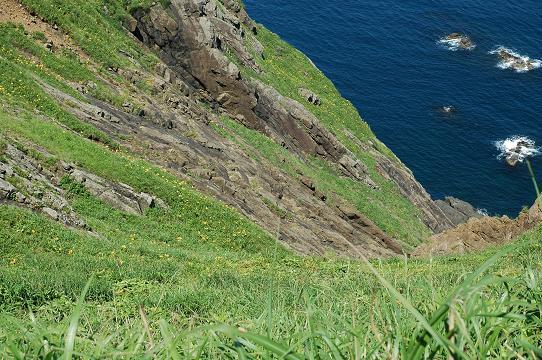 大野亀の崖下