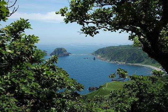大野亀登山途中の日本海