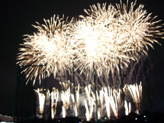 080810東京湾大華火祭2