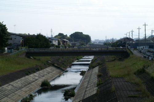 TAMA28.jpg