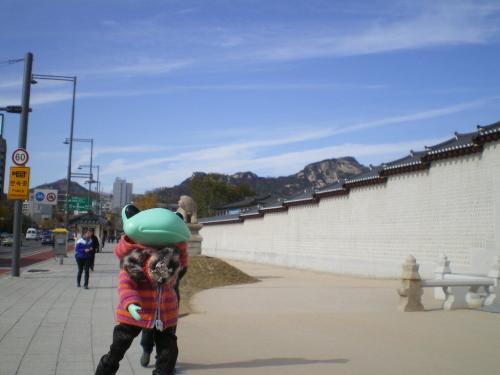 韓国14-7