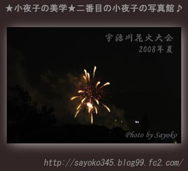 二番目の小夜子の写真館♪0101