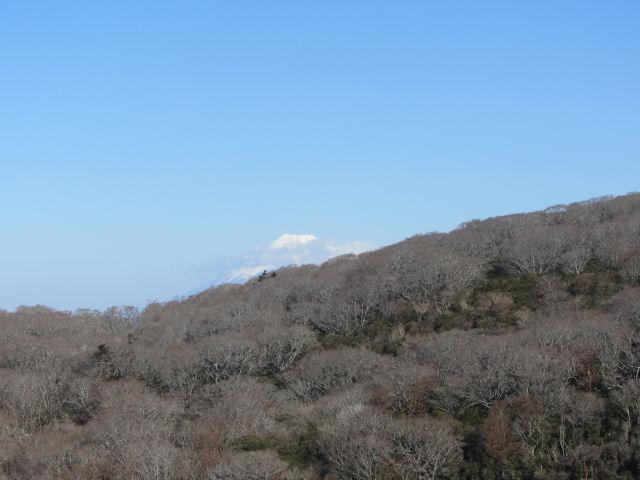 見晴らし台富士山