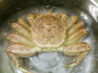 蟹蟹蟹!!!!!