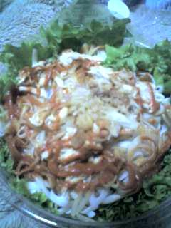 ベトナム風さっぱり麺(*^_^*)