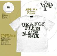 メンズノンノ ブランド リコ 非売品受注RICOTシャツ画像