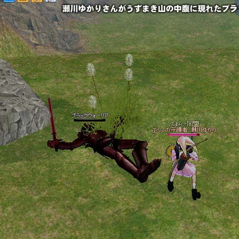 mabinogi_2006_02_02_007.jpg