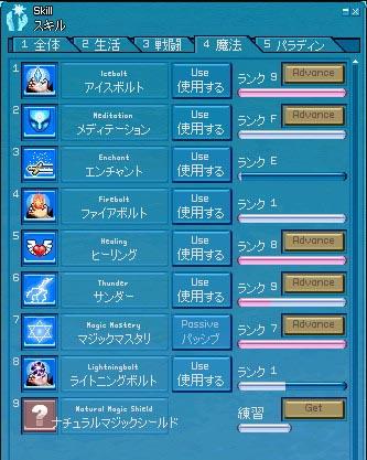mabinogi_2007_10_19_017.jpg