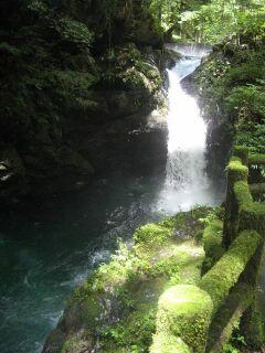 386027_265062967_184large滝