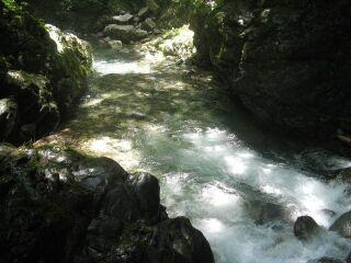 386027_265063116_15large矢納ヶ淵、水流